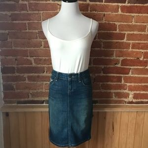 Paige Rossdale Embroidered Denim Skirt